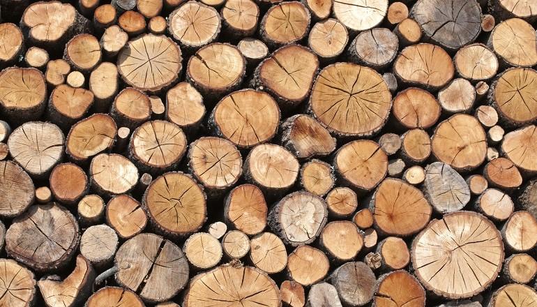 La madera dimsamaq - Fotos en madera ...